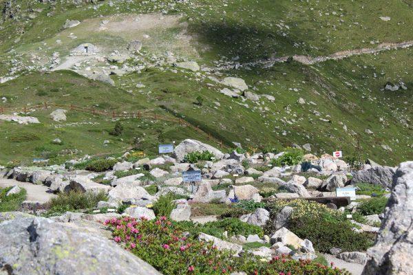giardino Monte Bianco